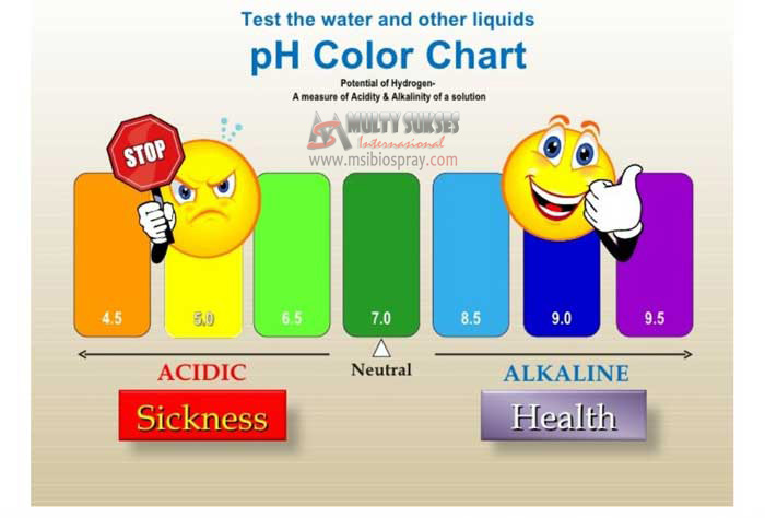 ph color chart copy