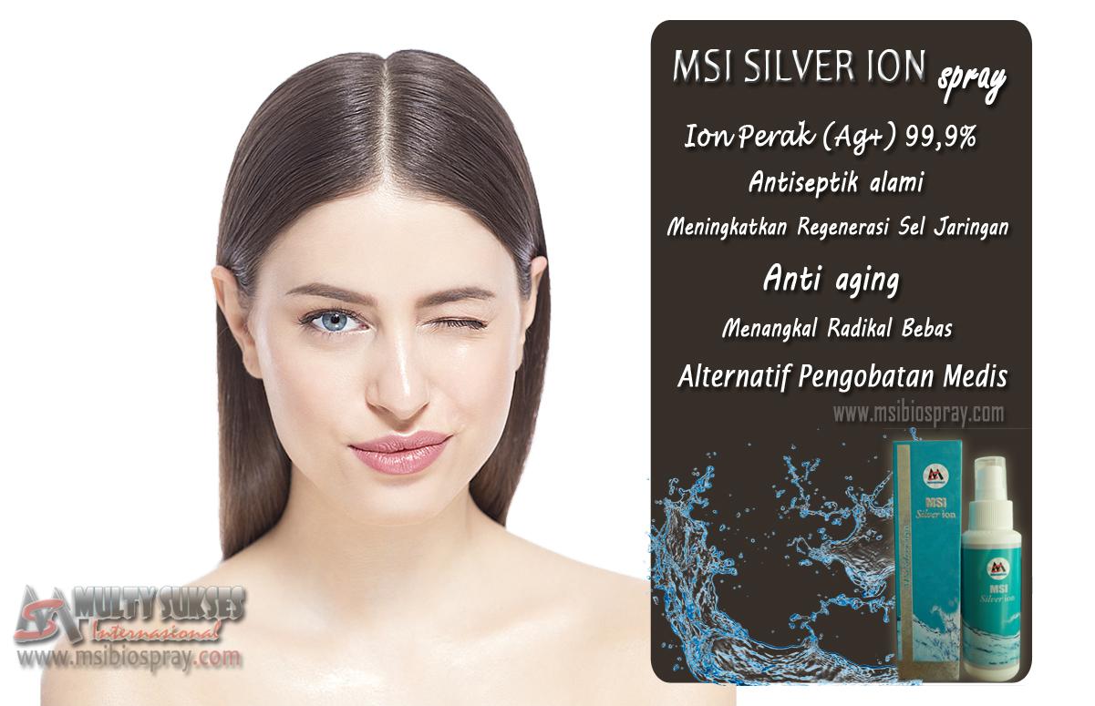 silver ion+model copy